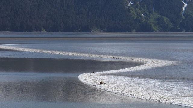 Thiên nhiên kỳ bí: Cơn sóng dài nhất lịch sử nhân loại