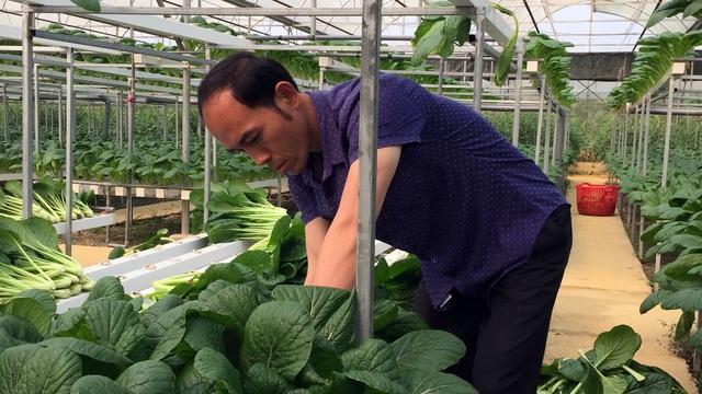 Chủ doanh nghiệp ở Lai Châu gửi hàng tấn rau ủng hộ người dân khu cách ly dịch Covid-19 ở Hà Nội