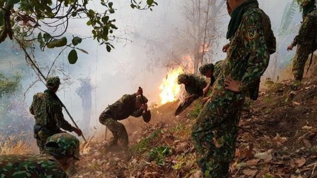 Cháy rừng tại An Giang, 6ha bị thiêu rụi