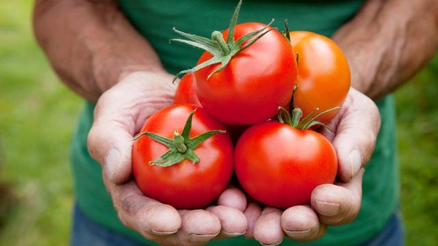 Bí mật ngàn năm của Đông y: Cách chọn thực phẩm theo màu sắc để ăn đúng thứ cơ thể cần nhất