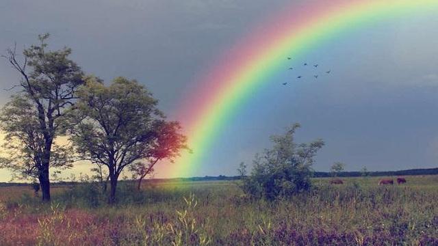 Chọn một cầu vồng bạn thấy ấn tượng nhất để xem điều tốt đẹp nào đang chờ đợi bạn trong tương lai gần
