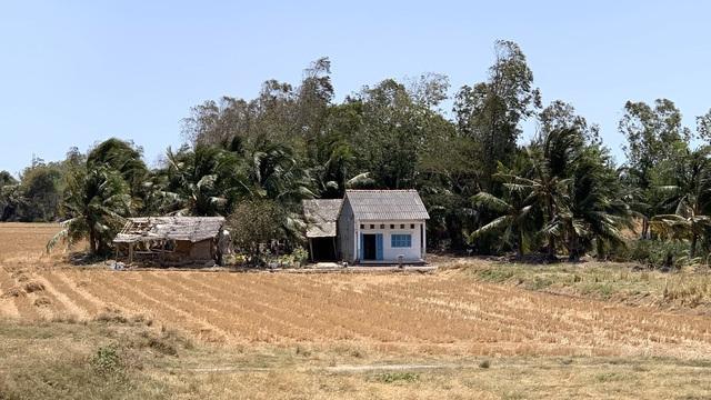Tường trình vùng hạn mặn: Đất sụp, đồng khô, người khát