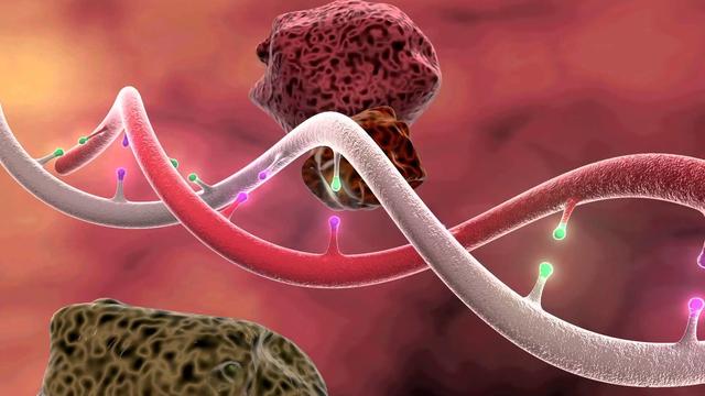 6 bí quyết phòng chống ung thư 0 đồng: Ai cũng nên làm tốt trong cuộc sống hàng ngày