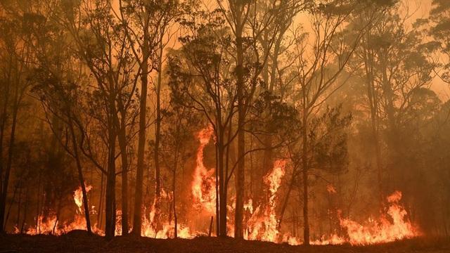 Cháy rừng quay trở lại không kiểm soát, người dân Australia chỉ có 5 phút dọn đồ sơ tán