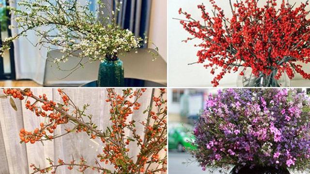 Bí quyết lựa chọn 4 loại hoa ngoại được chị em ưu chuộng nhất dịp Tết: Tuyết mai, Thanh liễu, Hồng gai và Đào đông