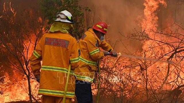 Australia cùng lúc đối mặt với cháy rừng, lũ lụt và bão