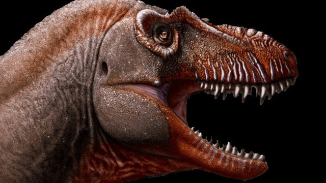 Phát hiện loài khủng long ăn thịt mệnh danh 'khủng long thần chết' sống cách đây 79,5 triệu năm