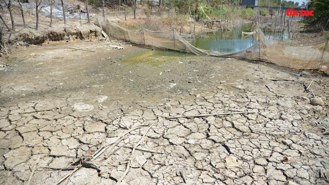 Cận cảnh hạn, mặn khốc liệt nhất lịch sử ở Tây Nam Bộ