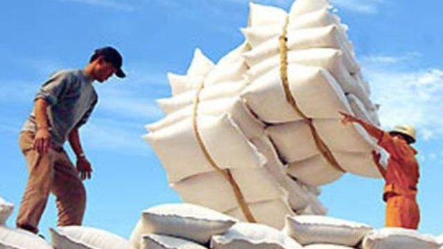 Việt Nam tạm dừng xuất khẩu gạo từ ngày 24/3, khẩn trương mua dự trữ gạo quốc gia