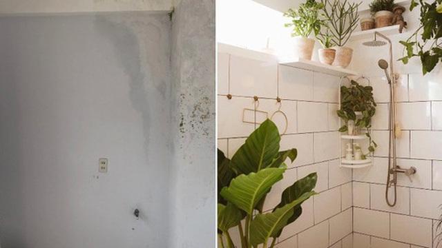 Biến góc nhà ẩm mốc cũ kĩ thành nhà tắm phong cách tropical trên cả cool, chàng trai khiến hội chị em thi nhau nhận idol
