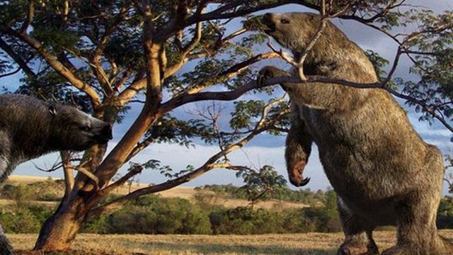 Chuyện thật như đùa, loài động vật tiền sử bị chết vì chính phân của mình