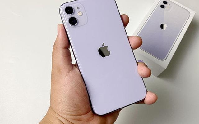 Về giá rẻ nhất thế giới, iPhone 11 có đáng mua tại Việt Nam?