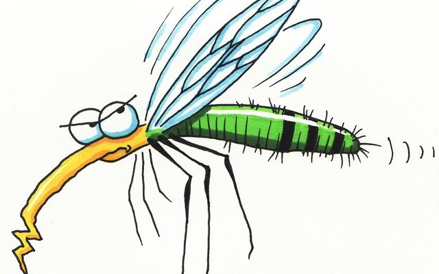 6 mẹo vặt trị muỗi đốt hiệu quả sẵn có trong nhà