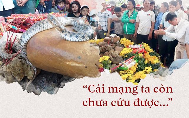 Cúi đầu lạy cá, bái lươn, khấn cây, vái rắn và cơn sốt giáo sư Việt