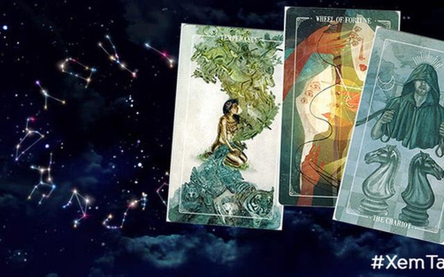 Rút một lá bài Tarot đại diện cho cung Hoàng đạo để biết cơ hội và may mắn nào đang chuẩn bị ập đến với cuộc sống của bạn