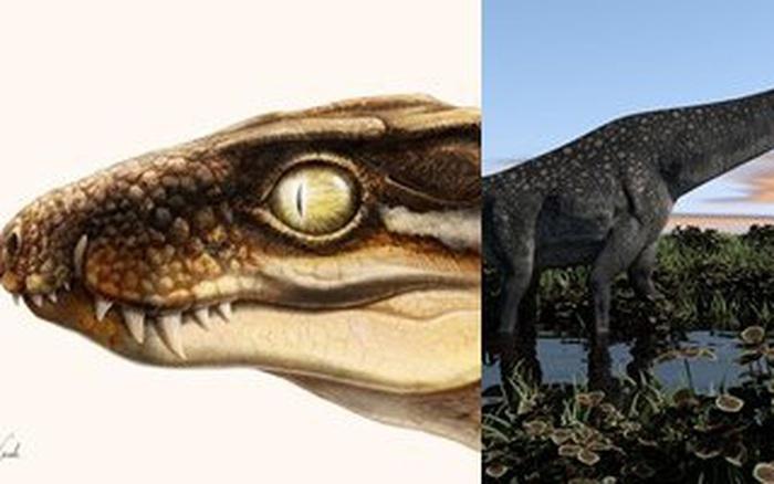 Sinh vật kinh dị 71 triệu năm tuổi đe dọa khủng long hàng chục tấn