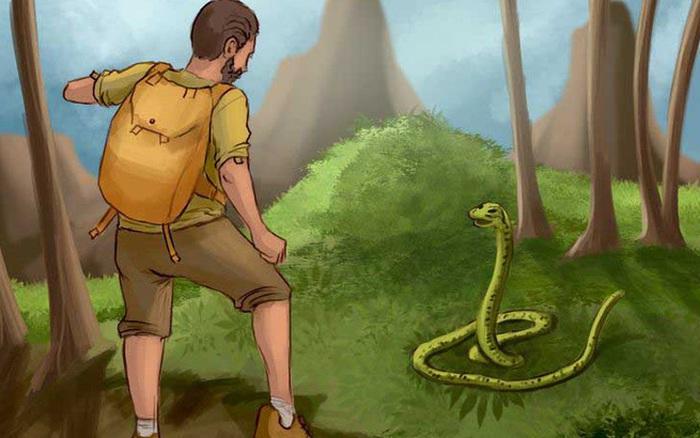 Test 5 giây: Nếu bất ngờ gặp rắn độc, bạn sẽ xử lý như thế nào trong tình huống