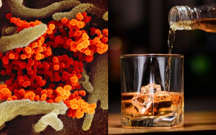 Uống rượu có giết được virus trong cơ thể: Chuyên gia nói sẽ