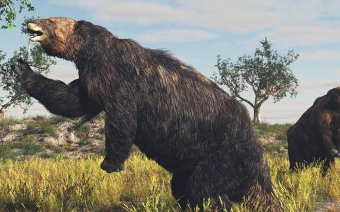[ẢNH] 10 loài động vật tuyệt chủng mà các nhà khoa học muốn mang lại sự sống - giáeurohômnay