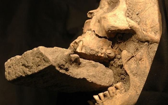 Phát hiện thi thể em bé 1.500 tuổi bị nghi chôn theo hình thức của ma cà rồng - kết quả xổ số trà vinh