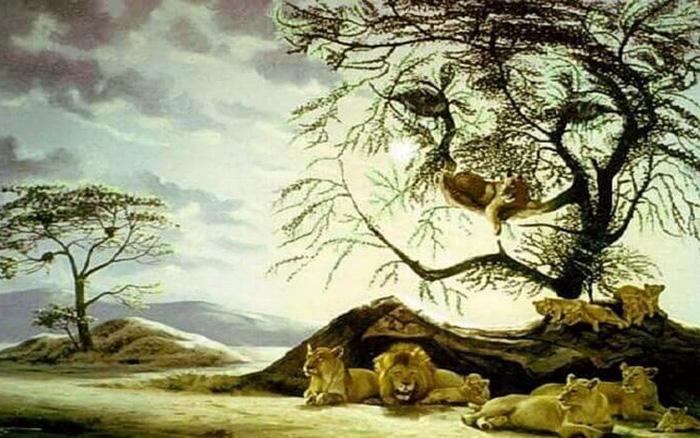 Test nhanh: Hãy để đàn sư tử giúp bạn hiểu rõ tình trạng thể chất và tinh thần hiện tại - kết quả xổ số ninh thuận