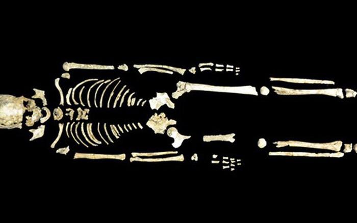 Bộ gen người cổ đại làm sáng tỏ lịch sử Đông Á