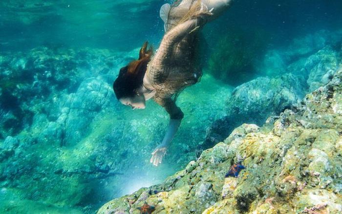 Nàng tiên cá xinh đẹp dưới đáy biển sẽ giúp bạn thể hiện tính cách của mình!