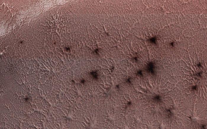 Bí mật về nhện đen trên sao Hỏa cuối cùng cũng được giải đáp