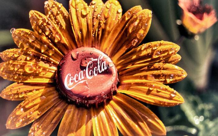 Nhữn công dụng thần kỳ của Coca mà bạn chưa chắc là đã biết