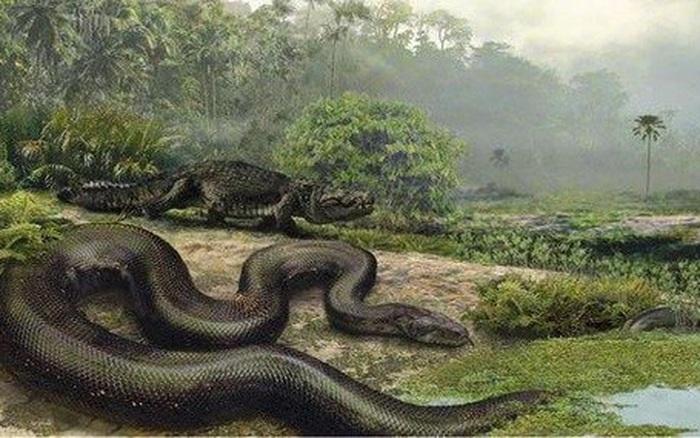 Những sinh vật siêu to khổng lồ từng tồn tại trên Trái Đất từ trước tới nay